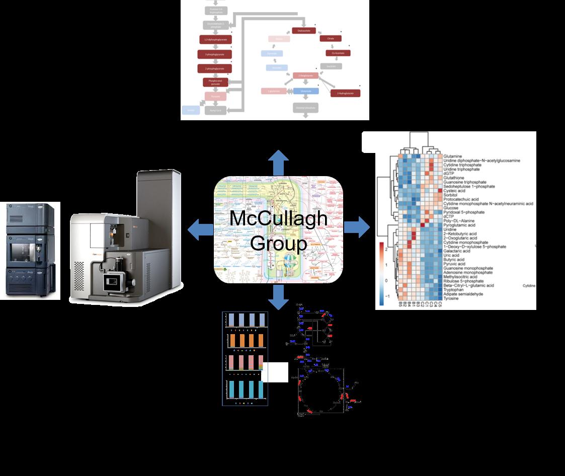 james mccullagh diagram website