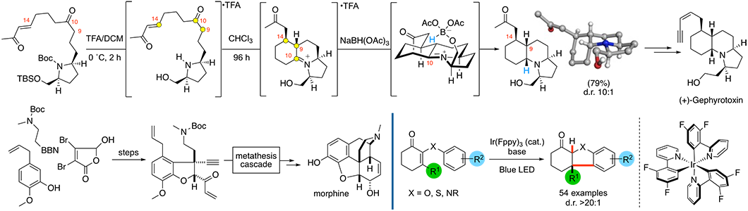 Illustration of Martin Smith's research into total synthesis of natural products
