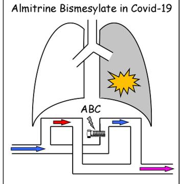 Diagram of almitrine study